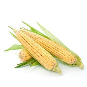 Organski Kukuruz Šećerac - Komad (Vlček)